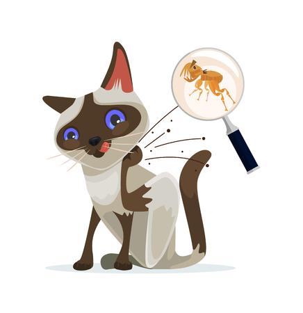 piojos: personaje del gato se rasca las pulgas fuera. Vector ilustración de dibujos animados plana