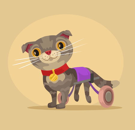 lame: Disabled cat character in wheelchair. Vector flat cartoon illustration