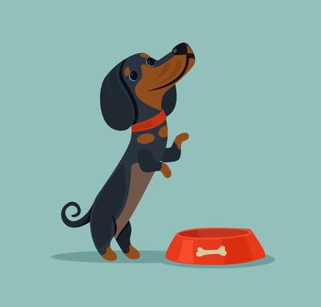 preguntando: La pequeña mascota linda del carácter del perro quiere comer y demandar la comida del dueño. Vector ilustración de dibujos animados plana Vectores