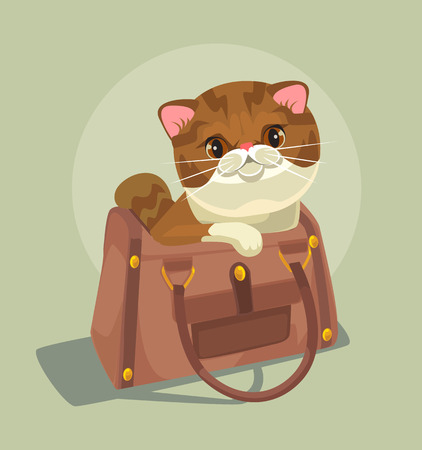 Small cat character sitting in lady bag. Vector flat cartoon illustration Ilustrace