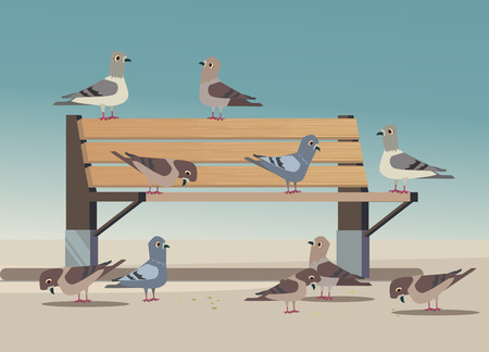 Pigeons in park eat bread crumbs. Vector flat cartoon illustration Ilustração