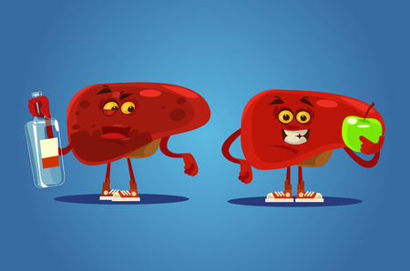 Healthy and unhealthy liver characters vector flat cartoon illustration.