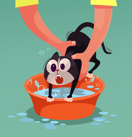 Angry cat character resist and do not want bathing. Vector flat cartoon illustration