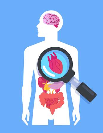 Body organs banner Medicine researching concept. Vector flat cartoon graphic design isolated isolated illustration
