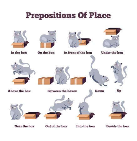 Cute cat character in different poses with box. Prepositions of place English. Studying of foreign language concept. Vector flat cartoon character isolated illustration Stok Fotoğraf - 117030334