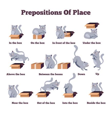 Personnage de chat mignon dans différentes poses avec boîte. Prépositions de lieu en anglais. Étude du concept de langue étrangère. Illustration isolée de personnage de dessin animé plat de vecteur