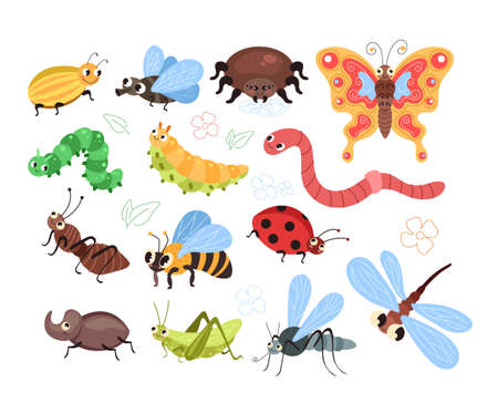 Beetles insects caterpillars worm ant spider butterfly mosquito bee isolated set.