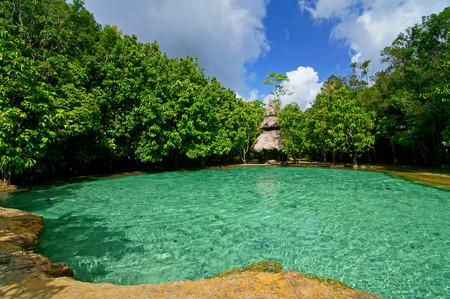 supposedly: Questo � Emerald Pool. Questa primavera calda proviene da un flusso caldo nella foresta di pianura di Khao Nor Juji che si suppone sia la Thailandia Archivio Fotografico