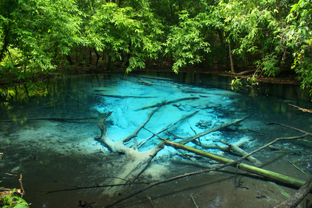 supposedly: This is  spring of Emerald Pool. This hot spring originates from a warm stream in the lowland forest of Khao Nor Juji which is supposedly Thailand