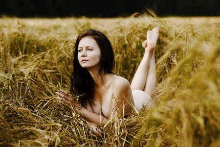 Portrait of a beautiful  woman in the field photo
