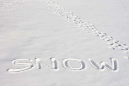 The word SNOW imprinted in a fresh snowy field Stock Photo - 4932878