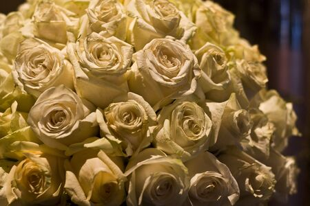 captivating: Close up of a bouquet of white roses