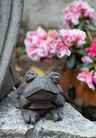 frog stone gray flower ornament handcraft mexican traditional close-up daylight wise garden decoration animal