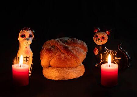 halloween dead dog cat katrina pan muerto candles velas white red darkness Stok Fotoğraf
