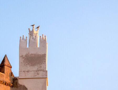 two lonely birds standing church tower blue sky
