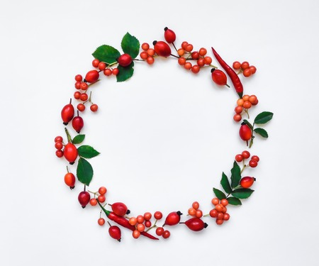 Bright red berries of dog rose and chili peppers in a round frame on white background. Briar floral ornament. Flat lay, top view