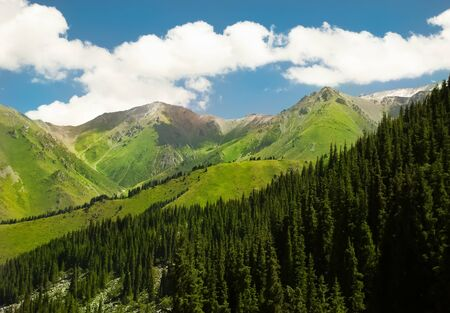 Highlands, colorful green mountains and sunny day.