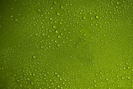 Kristallklares Wasser fällt über grün hintergrund