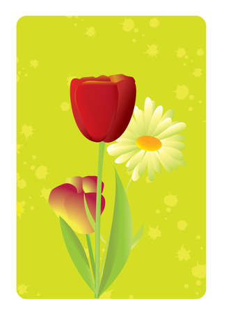 Vector illustration of spring and blooming flowers tulips and daisies. Stock Vector - 9297363