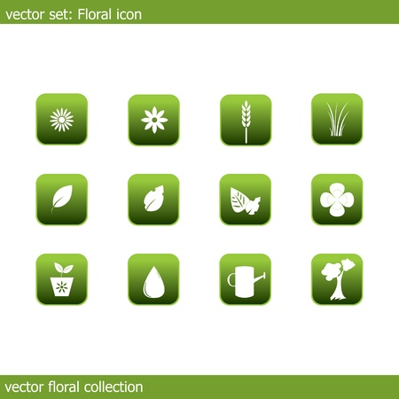collection of icons on the flora and ecology Illustration
