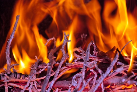 Burning wood in the fireplace and the flames  Stock Photo - 13120965