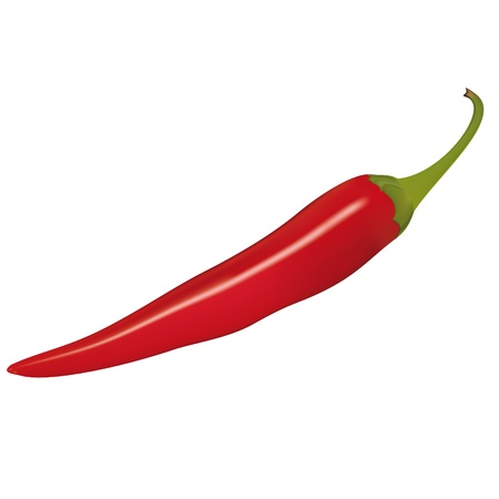 illustration of a red chili pepper  Using mesh Vector