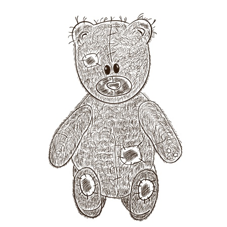 Teddy bear hand draw  illustration on white background  Vector