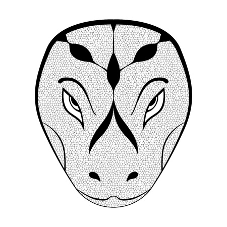 Sketch head of the snake  illustration Vector