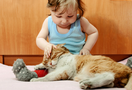 Tiny boy playing with ginger cat house.