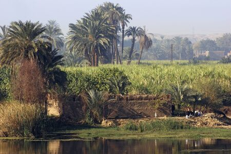 rural waterside scenery including River Nile in Egypt (Africa) at evening time photo