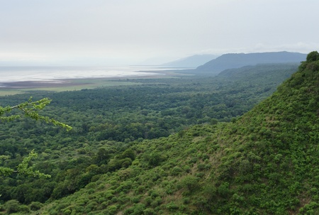 aerial view over Lake Manyara National Park in Tanzania photo