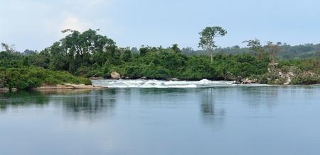 white nile: orilla paisaje que muestra el r�o Nilo cerca de Jinja, en Uganda (�frica)