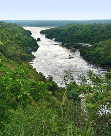 high angle River Nile scenery around the Murchison Falls in Uganda (Africa)  Stock Photo - 10838651