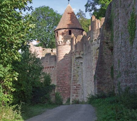 wertheim: detail of the idyllic  Wertheim Castle in Southern Germany at evening time