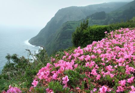 coastal landscape at Sao Miguel Island photo