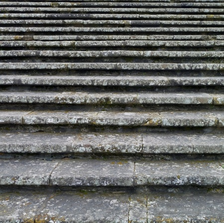 full frame abstract background showing some old lichen-overgrown stairs photo