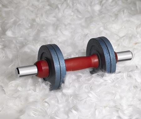 antipode: dumbbell in down feather background