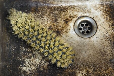 dingy: detail shot of a old dirty sink with scrubber inside