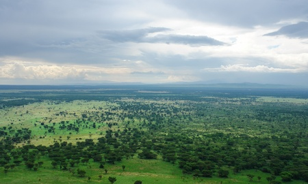 savanna: aerial scenery around the Bwindi Impenetrable Forest in Uganda (Africa) in cloudy ambiance