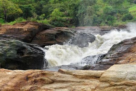 white nile: las cataratas de Murchison, en Uganda (�frica) Foto de archivo