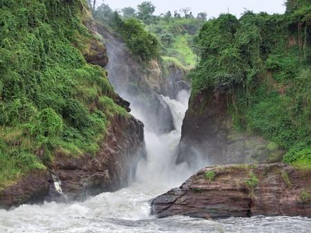 white nile: formaci�n de roca cubierto en las cataratas de Murchison, en Uganda (�frica)