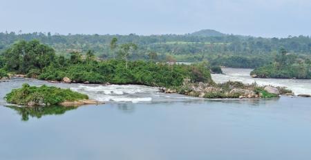 waterside scenery showing the River Nile near Jinja in Uganda (Africa)