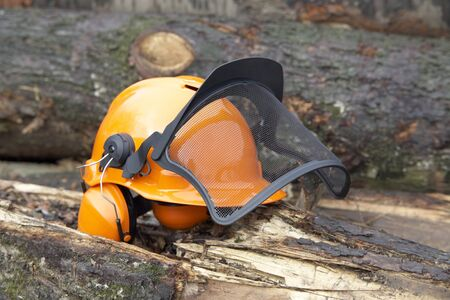orange protective helmet with ear- and face- protection.  Outdoor shot in woody ambiance Stock Photo