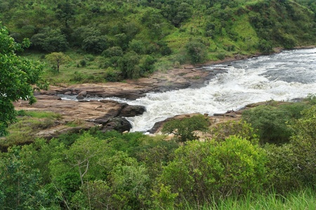 high angle scenery around the Murchison Falls in Uganda (Africa) Stock Photo - 10917368