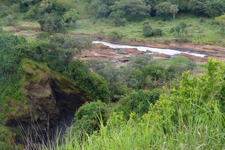 natural scenery around the Murchison Falls in Uganda (Africa)  Stock Photo - 10917374