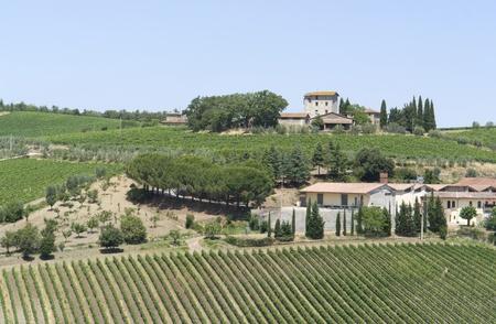 scenery around Gaiole near Castle of Brolio in the Chianti region of Tuscany in Central Italy Stock Photo - 10917315