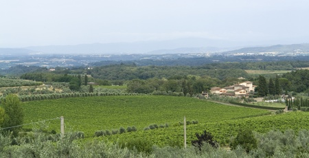 scenery around Gaiole near Castle of Brolio in the Chianti region of Tuscany in Central Italy Stock Photo - 10916801