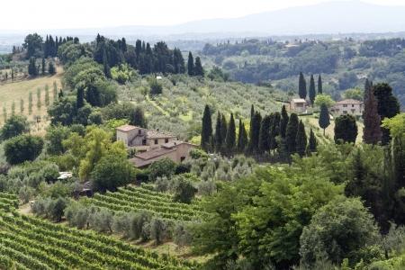 paisaje panorámico situado en la región de Chianti, en Toscana, una zona de Italia (Europa del Sur)