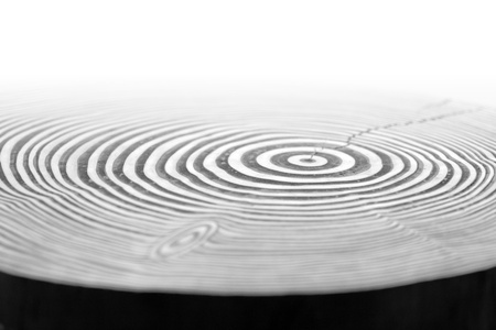abstract detail of painted wooden annual rings photo
