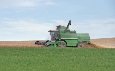 agricultural scenery showing a green harvester at the edge of a crop field while harvesting at summer time in Southern Germany